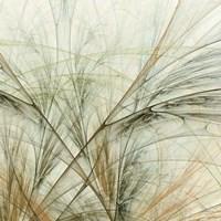 Fractal Grass VI Fine-Art Print