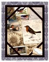 Bird Watching IV Fine-Art Print