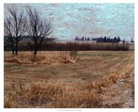 Fields I Fine-Art Print