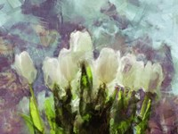 Sunlit Tulips II Fine-Art Print