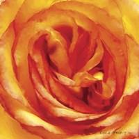 Painterly Flower I Fine-Art Print