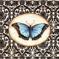 Fanciful Butterfly II Fine-Art Print
