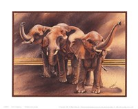 Family of Elephants Fine-Art Print