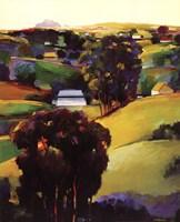 Eucalyptus Hills Fine-Art Print