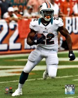 Reggie Bush 2012 Action Fine-Art Print