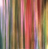 Spectra Falls I Fine-Art Print