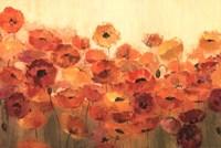 Summer Poppies Crop Fine-Art Print