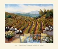 Vineyards to Mount St. Helena Fine-Art Print