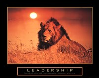 Leadership-Lion Fine-Art Print
