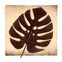 Monstera I Fine-Art Print