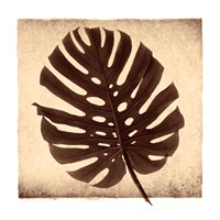 Monstera II Fine-Art Print