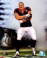 J.J. Watt 2012 Action Fine-Art Print