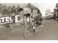 Merckx Dominates Fine-Art Print