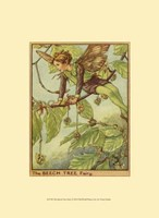 The Beech Tree Fairy Fine-Art Print
