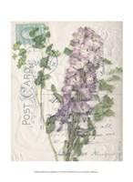 Small Postcard Wildflowers I Fine-Art Print