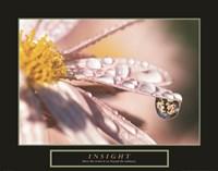 Insight - Dewdrop Fine-Art Print
