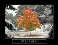 Endurance - Fall Tree Fine-Art Print