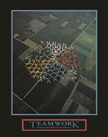 Teamwork-Skydivers Fine-Art Print