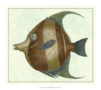 Angel Fish II Fine-Art Print