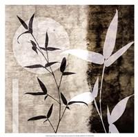 Bamboo Moon II Fine-Art Print