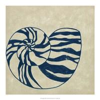 Indigo Shell II Fine-Art Print