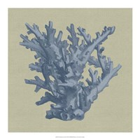 Chambray Coral I Fine-Art Print