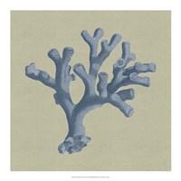 Chambray Coral II Fine-Art Print