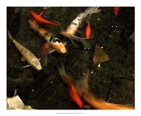 Goldfish Pond II Fine-Art Print