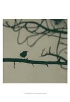 Caligraphy Bird II Fine-Art Print