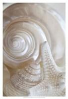 Pearlesce III Fine-Art Print