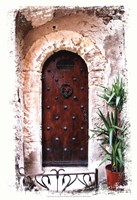 Doors of Europe III Fine-Art Print