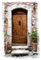 Doors of Europe V Fine-Art Print