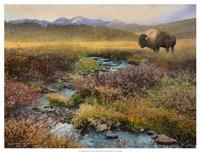 Bison & Creek Fine-Art Print