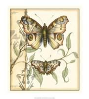 Tandem Butterflies I Fine-Art Print