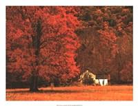 Farm House on a Autumn Morn' Fine-Art Print