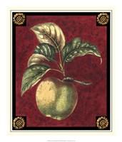 Pomme De Hubbardston Fine-Art Print