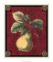 Poire De Portugal Fine-Art Print