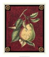 Poire D'Arenburg Fine-Art Print