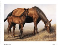 Mare and Foal Fine-Art Print