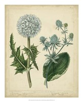 Cottage Florals III Fine-Art Print