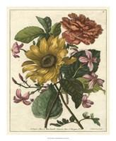 Floral Posy I Fine-Art Print