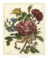 Floral Posy II Fine-Art Print
