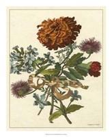 Floral Posy III Fine-Art Print
