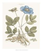 Bashful Blue Florals I Fine-Art Print