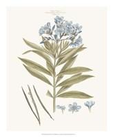 Bashful Blue Florals III Fine-Art Print