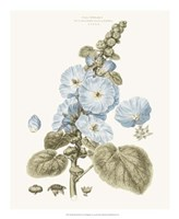 Bashful Blue Florals IV Fine-Art Print