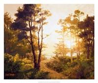 Gilded Pathway Fine-Art Print