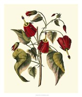 Jenna's Flowers I Fine-Art Print