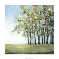 Tree in Summer Fine-Art Print
