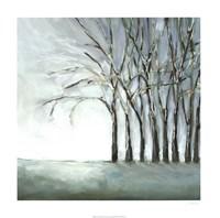 Tree in Winter Fine-Art Print